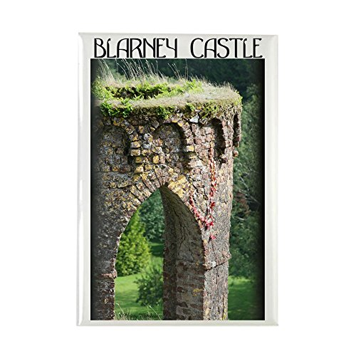 CafePress Blarney Castle Rectangle Refrigerator