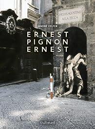 Ernest Pignon-Ernest par André Velter