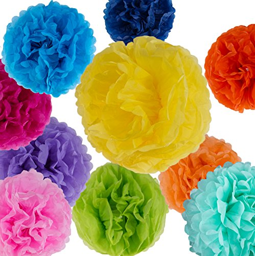 20 Pcs Tissue Paper Pom Poms Set, 9 Colors, Mixed Sizes 14