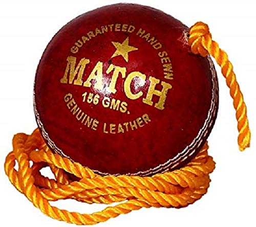PSE Priya Sports Leather Match Practice Hanging Cricket Ball Red