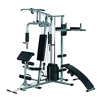 Soozier 100 lb Stack Multi-Exercise Home Fitness Station Gym Machine