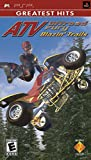 ATV Offroad Fury Blazin Trails - Sony PSP