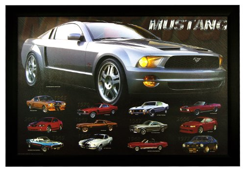 Mustang Evolution, American Muscle Car 24