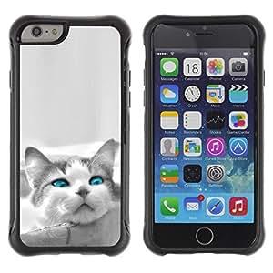 Suave TPU GEL Carcasa Funda Silicona Blando Estuche Caso de protección (para) Apple Iphone 6 PLUS 5.5 / CECELL Phone case / / The Blue Eye Cat /