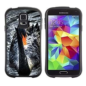 LASTONE PHONE CASE / Suave Silicona Caso Carcasa de Caucho Funda para Samsung Galaxy S5 SM-G900 / Black Swan Water Beak Cute Bird Ornithology