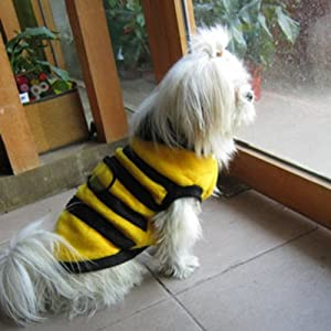 Dog Cat Pet Supplies Lovely Bumble Bee Dress Up Costume Apparel Coat Clothes