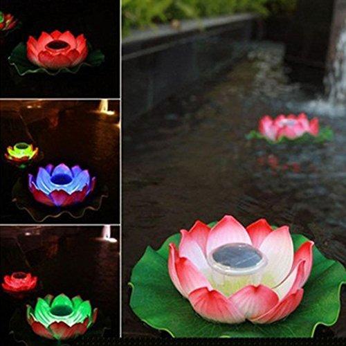 Floating Disco Underwater Led Light Show - 8