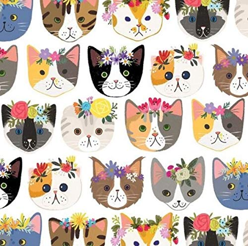 Flat Gift Wrapping Paper (Kitty Cats - 30 Inch x 10 Foot Flat Sheet Gift Wrapping Paper   Colors of Rainbow)