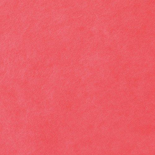 HEADS 薄葉紙 無地 ラッピングカラー ペーパー レッド/赤 (200枚) WP-RE まとめ売り 10パック B0783PDZC6