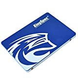 KingSpec 64GB 2.5-Inch SATA III Internal SSD (T-64)