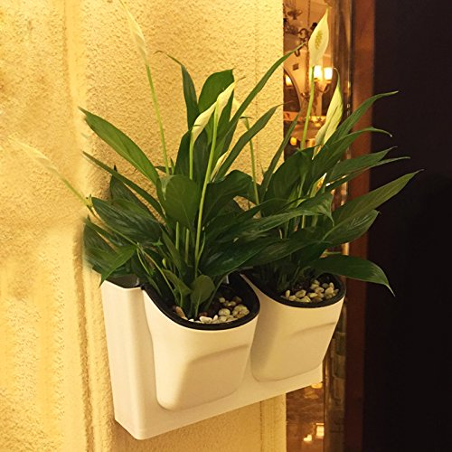 Kingbuy Creative Watering Vertical Planters product image