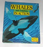Whales and Dolphins in Action, Tanner O. Gay, 0689715358