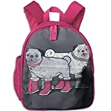 Kids Insulated Toddler Backpack With Safety Harness Leash - Best Reviews Guide