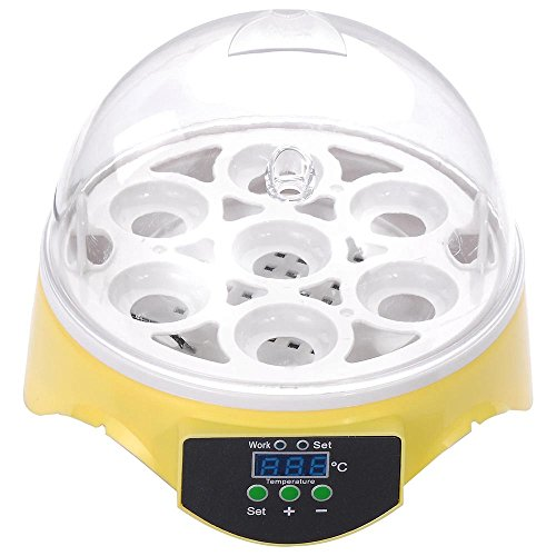 ReaseJoy Digital 7 Eggs Incubator Chicken Poultry Hatcher CE Certificated by ReaseJoy