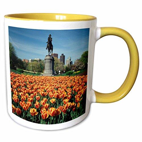 3dRose Danita Delimont - Walter Bibikow - Statues - USA, Massachusetts, Boston. Tulip patch with statue of Washington. - 15oz Two-Tone Yellow Mug (mug_192272_13)
