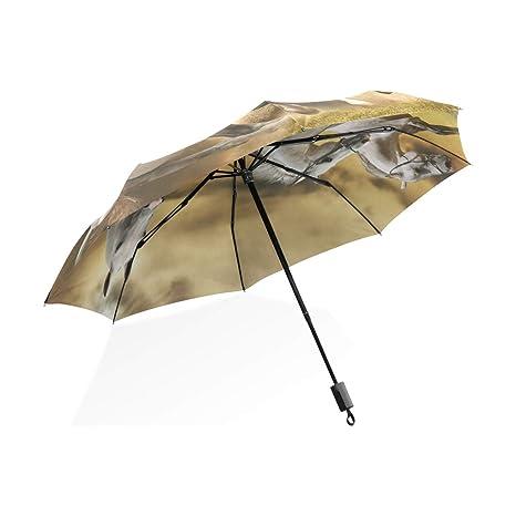 ISAOA Paraguas de Viaje automático, Compacto, Plegable, Tres Caballos Blancos, Resistente al