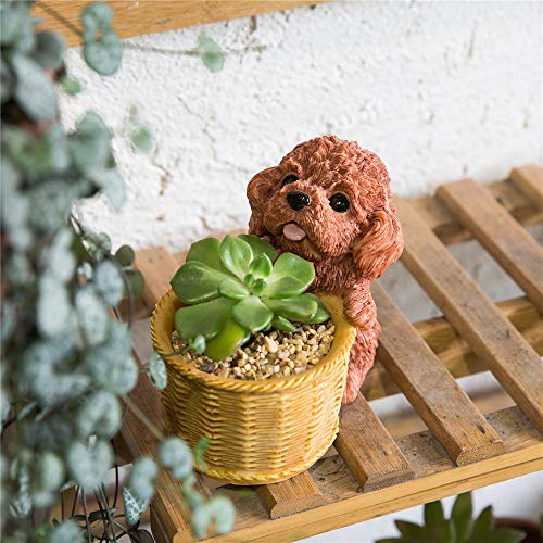 Cactus Planter Best Quality - Flower Pots & Planters - Decorative Brown Chocolate Teddy Dog Resin Flower Cactus Succulent Pot Planter Bonsai Home Garden Pot Decor - 1 PCs
