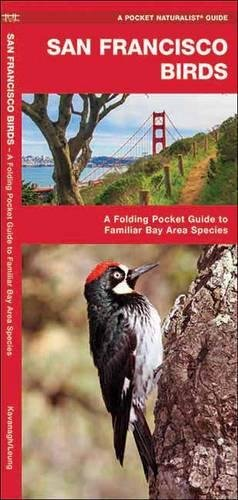 San Francisco Birds: A Folding Pocket Guide to Familiar Bay Area Species (A Pocket Naturalist Guide) pdf epub