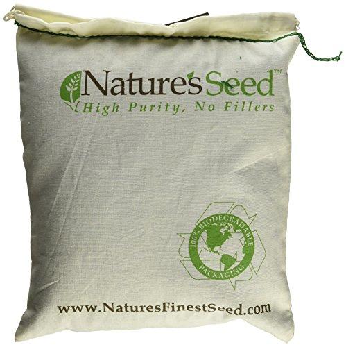 Natures Seed PB TORT 500 F Tortoise Forage
