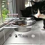 PetFusion Elevated Dog Bowls, Cat