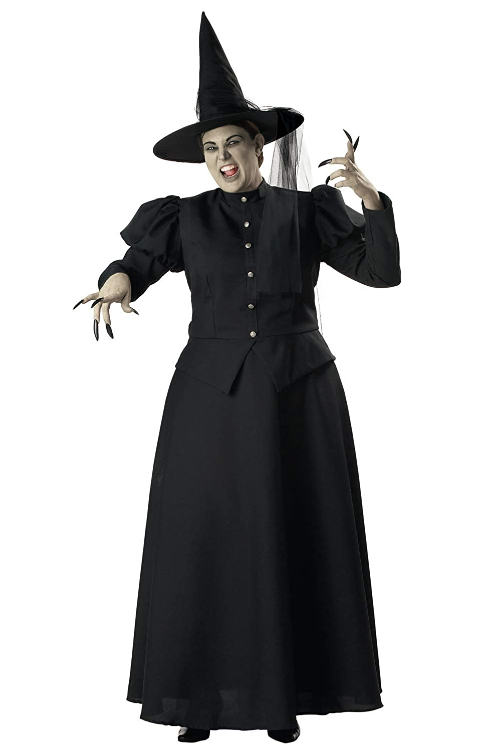 InCharacter Wretched Witch Adult Costume-