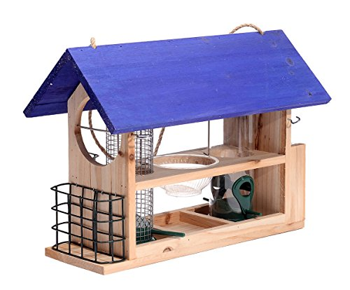 - Outside Fun Charming Cedar Wood Deluxe Blue- Bird House Feeder with Multi Perch and Feeding Compartments