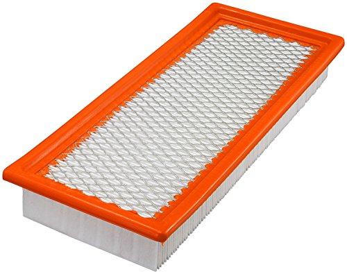 Fram Air Filter CA10170 249390553