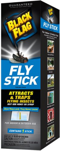 Elite Metal Bed - Black Flag Fly Stick Insect Trap, 6-Pack
