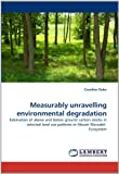 Measurably Unravelling Environmental Degradation, Caroline Ouko, 3843386498