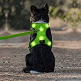 LED Dog Harness, USB Rechargeable Reflective Pet Vest Harness with Comfortable Padded & Adjustable Belt Suit for Small/ Meium/ Large Dog (S,Green)