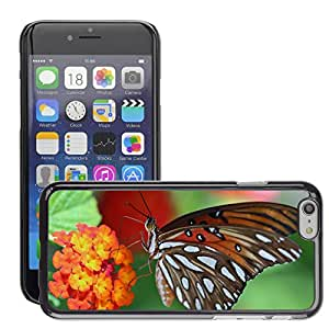 Super Stellar Slim PC Hard Case Cover Skin Armor Shell Protection // M00051807 butterfly beautiful aero closeup // Apple iPhone 6 PLUS 5.5