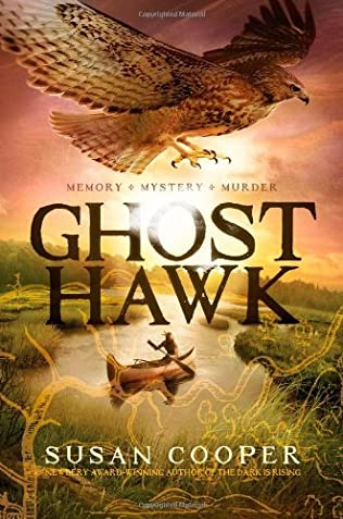 book cover of Ghost Hawk