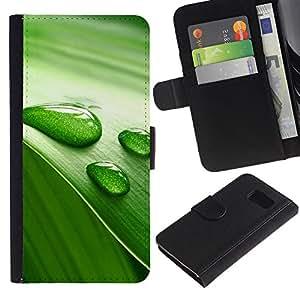 LASTONE PHONE CASE / Lujo Billetera de Cuero Caso del tirón Titular de la tarjeta Flip Carcasa Funda para Samsung Galaxy S6 SM-G920 / Green Leaf Nature Water Life