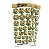 Guinea Pig Cavia Removable Matte Sticker Sheets Set