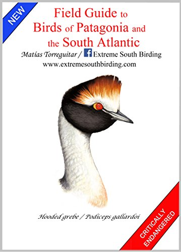 Amazon field guide to birds of patagonia and the south field guide to birds of patagonia and the south atlantic by torreguitar matas fandeluxe Ebook collections