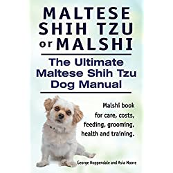 Maltese Shih Tzu or Malshi. The Ultimate Maltese Shih Tzu Dog Manual. Malshi book for care, costs, feeding, grooming, health and training.