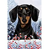 Winter Berries Garden Size Flag Black and Tan Dachshund Review
