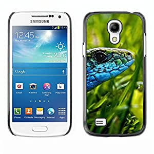 Impact Case Cover with Art Pattern Designs FOR Samsung Galaxy S4 Mini i9190 Lizard Green Grass Sun Blue Snake Betty shop