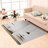 Sophiehome skid Slip rubber back antibacterial Area Rug bathroom with light gray walls bathtub sink and towel shelf concept of luxury interior toned 495997639 Home Decorative