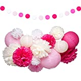 Pink and White Party Decorations Supplies Paper Lanterns Tissue Paper Pom Poms Dot Garland Kit for Wedding Birthday Bachelorette Baby Shower for Girls 19Pcs