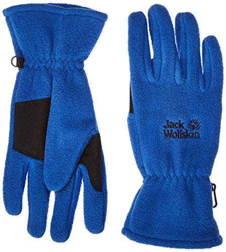 Jack Wolfskin Artist Glove, Deep Sea Blue, ()