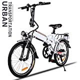 250W 36V Aluminum Alloy Frame Folding 18.7 inch Wheel Mountain E-bike with Lithium-Ion Battery [US Stock]