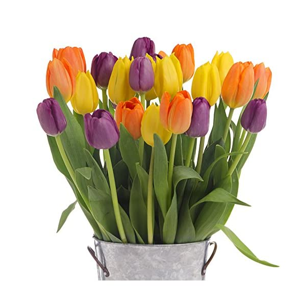 Stargazer-Barn-Autumn-Lights-Tulip-Bouquet-with-Vase-Fresh-from-Farm