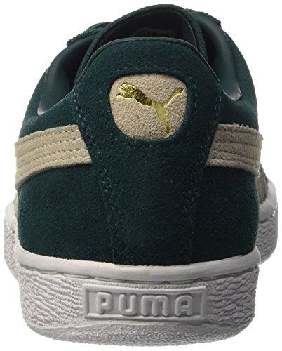 Suede Baskets Classic Ponderosa Bianco Homme Suede Classic Puma Pine wzRxTqdRE