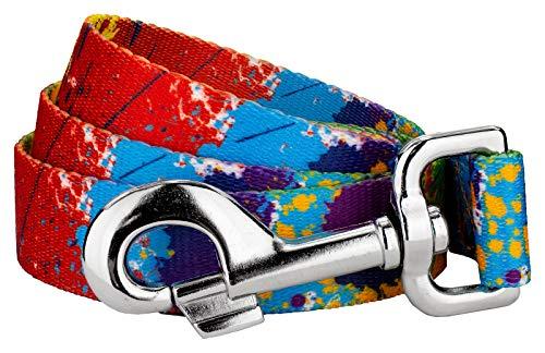 Country Brook Petz | 1 Inch Paint Splatter Dog Leash - 6 Foot
