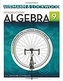 Introductory Algebra 9th Edition