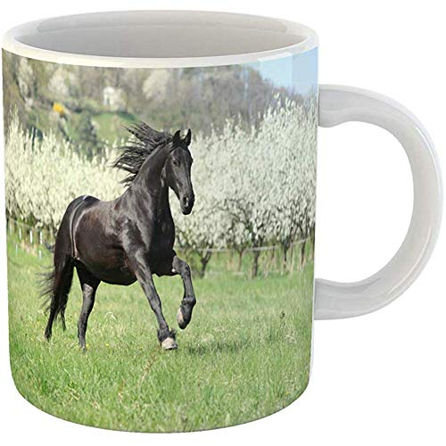Coffee Tea Mug Gift 11 Ounces Novelty Ceramic Green Friesian Nice Black Horse Standing in Front of Flowering Plum Trees Head Gifts For Family Friends Coworkers Boss Mug ()
