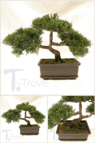 Artificial Japanese Cedar Bonsai Tree 9 Inch Tall Plant Garden Live Decor New