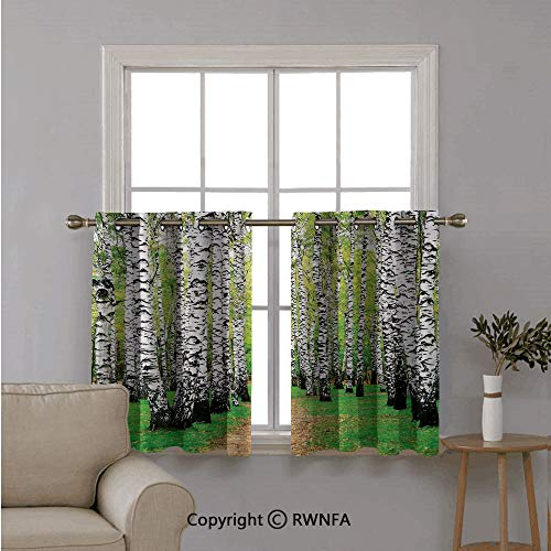 - RWNFA Triple Weaved Short Curtain Tiers,Pathway in Birch Grove Forest Early Fall Scenery in Woodland,with Eyelet Top for Small Window,42