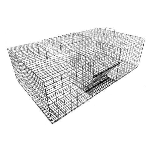 Tomahawk Single Door Extra Large Live Pigeon Trap by Tomahawk